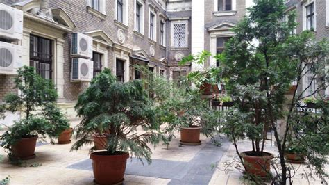 Omega Guesthouse Budapest - Szallas