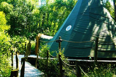 Crafty Camping - Hoppus the Tipi - Glamping in Dorset