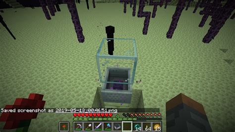 [MC-151683] Endermen do not attack Endermites spawned with